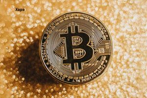 Bitcoin to survive