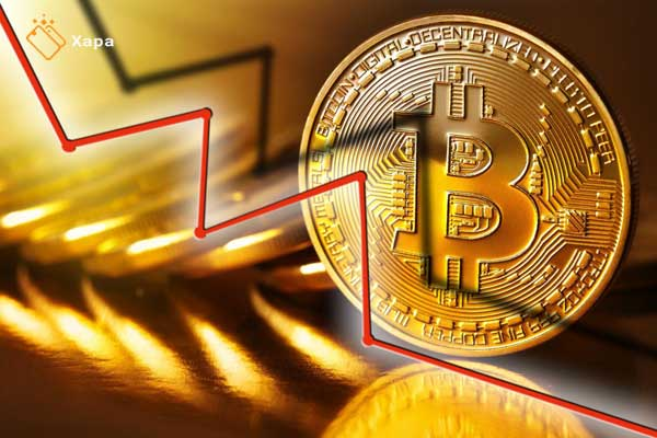 The impact of Halving on the price of bitcoin