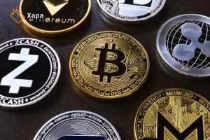 What is Cryptocurrency's Support