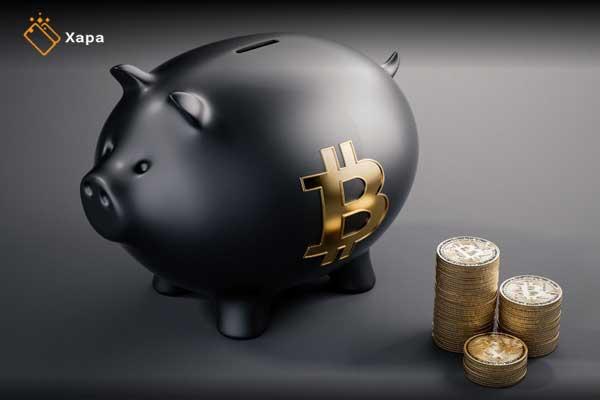 anonymous bitcoin billionaires