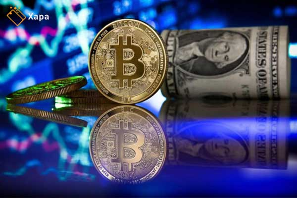 forex and Cryptocurrency